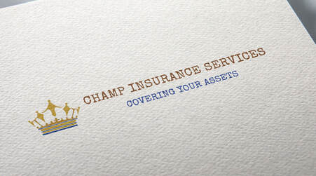 Independent Insurance Agency Consultation Advice